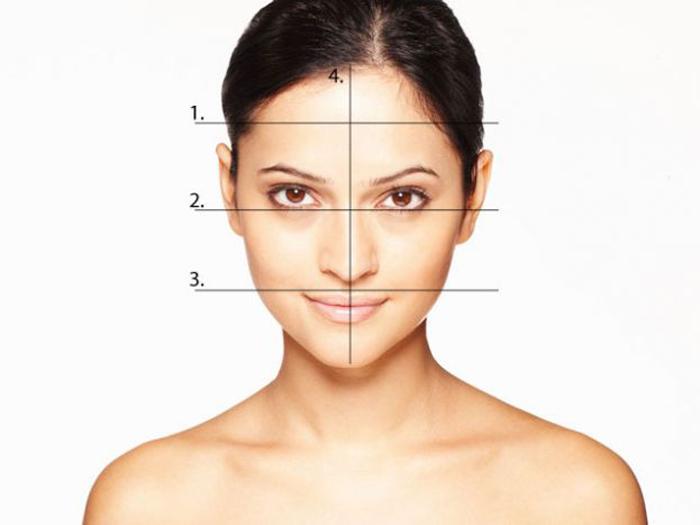 Как сделать замеры формы лица